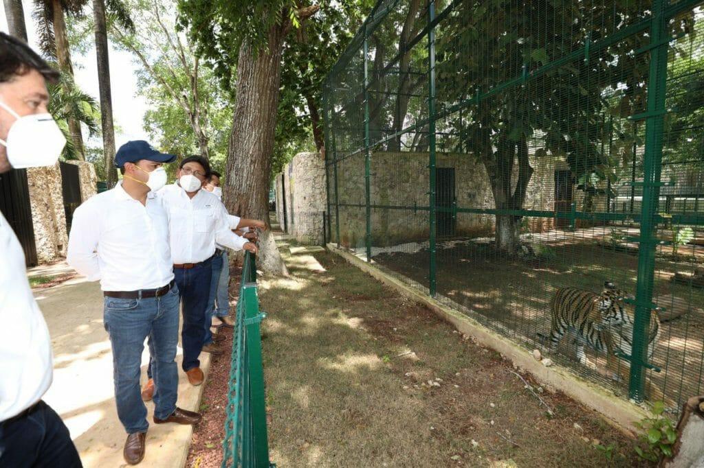 """El Gobernador Mauricio Vila Dosal recorre el zoológico """"La Reina"""" de Tizimín para supervisar los trabajos de construcción y remodelación"""